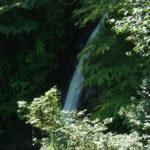 陣見山と秩父華厳の滝