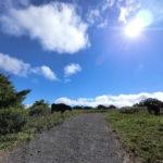 日本水と塞神峠と高原牧場
